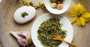 zigmaz-hierbas_medicinales