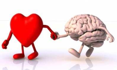 zigmaz- inteligencia emocional