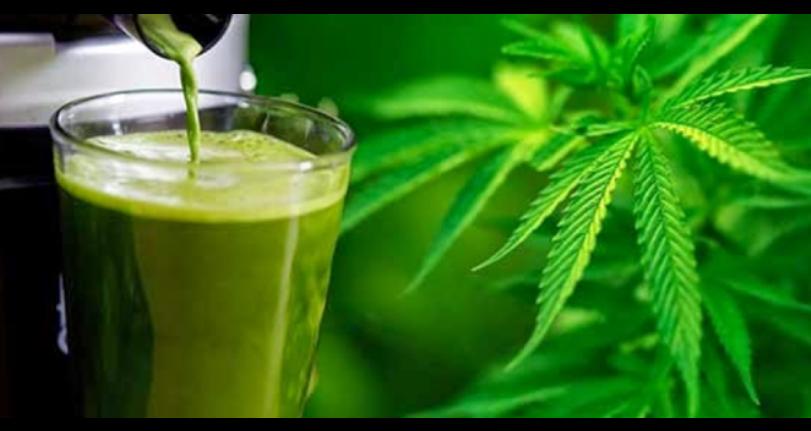 jugo de marihuana