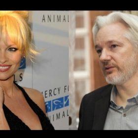 ¿Pamela Anderson y Julian Assange serán más que amigos?